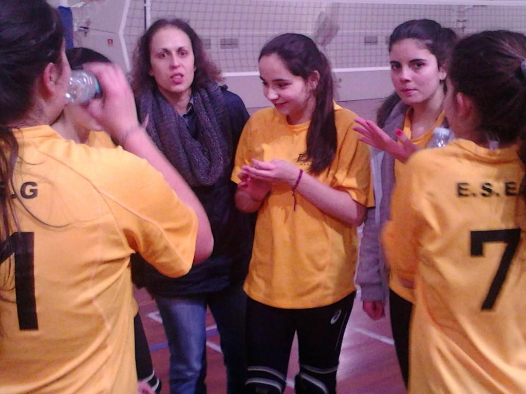 Voleibol 5