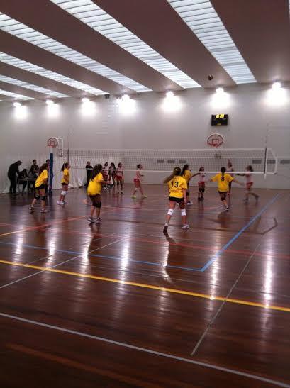 Jornada I - Campeonato Voleibol Feminino